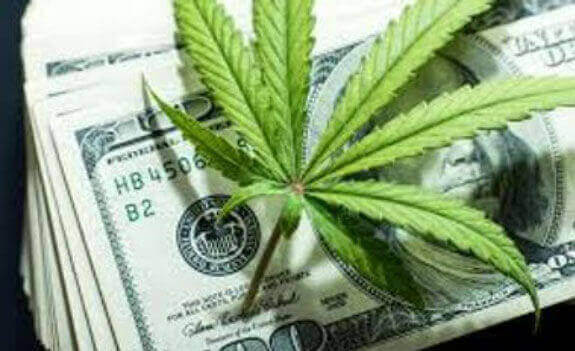 CBD oil price likely factor in $100 million payoff predicted for Ventura County hemp crop