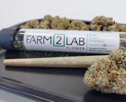 Farm2Lab Pre-Roll