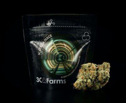 Cocoa Dulce marijuana flower