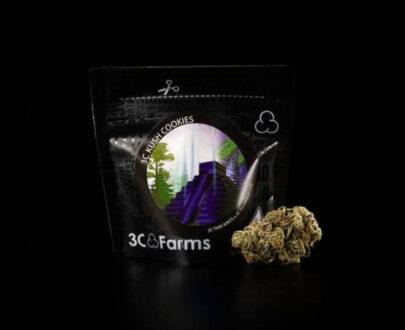 Kush cookies marijuana flour 1 g
