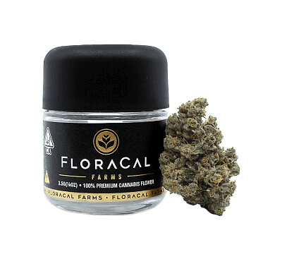 Floracal Mac marijuana jar available at local cannabis dispensaries in Port Hueneme and Ojai, CA