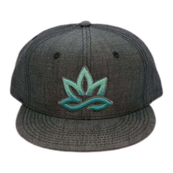420 HPC- Hueneme Patient Collective apparel - Grey Cap