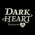 Dark Heart Legends