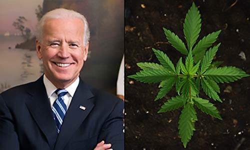 Joe-Biden-Marijuana-Legalization